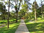 Du-lich-Penang-va-Penang-Botanic-Gardens-dia-danh-noi-tieng