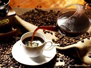 Cà phê Thu Hà tại Tp Pleiku, phân phối toàn quốc