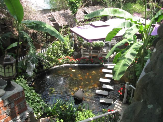 Cafe Bằng Lăng Tím, quán cà phê Độc đáo và lãng mạn tại Tân Bình