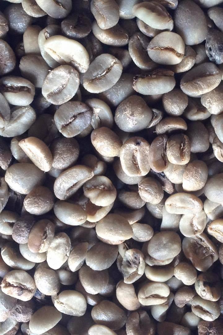 Chuyên cung cấp cà phê nhân xô, sàng các loại giá tốt nhất thị trường 0974.778.611